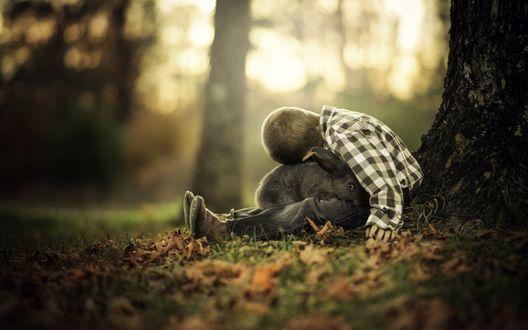 Обои Мальчик с кроликом у дерева. Фотограф Phillip Haumesser