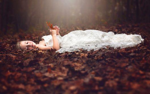 Обои Девочка в белом платье лежит на осенней листве, фотограф Julia Altork