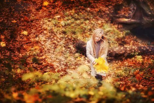 Обои Девочка с букетом листьев