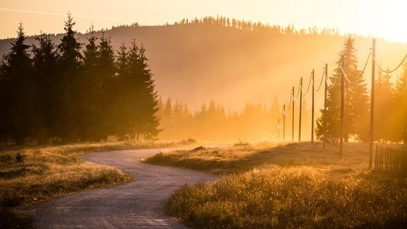 Обои Дорога осенним утром к горам Apuseni, Romania / Апусени, Румыния, фотограф Green Lemon
