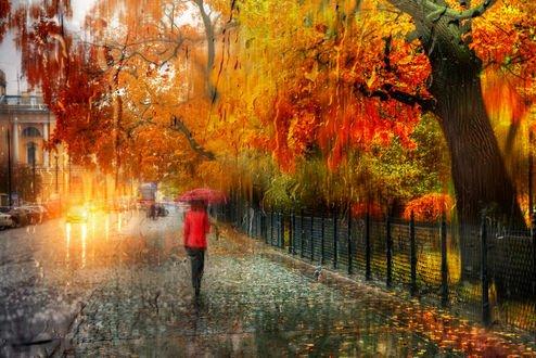 Обои Девушка с зонтом идет по тротуару в дождь, осень в Санкт-Петербурге, фотограф Эдуард Гордеев