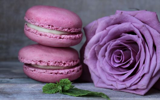 Обои Розовое печенье макарун лежит возле сиреневой розы и зеленых листочков