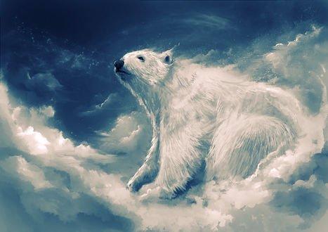 Обои Белый медведь на фоне неба и облаков, by Delun