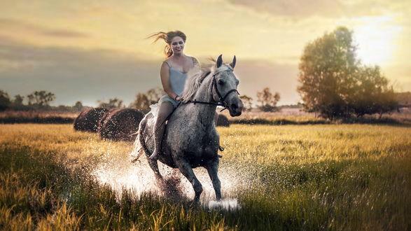Обои Девушка с развевающимися волосами скачет на коне по лужам посреди поля в лучах утреннего солнца