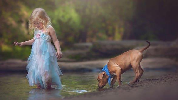 Обои Маленькая светловолосая девочка в нарядном платье бредет босиком по ручью, позади за ней щенок пьет воду из ручья