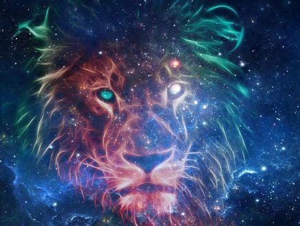 Обои Морда льва на фоне космоса