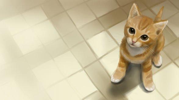 Обои Рыжий котенок сидит на полу, by TamalasGhost