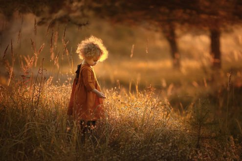 Обои Миленькая девочка стоит в траве. Фотограф Зарх Юлия