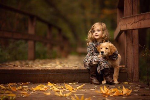 Обои Девочка со своим щенком сидит на деревянном мостике с осенней листвой. Фотограф Зарх Юлия