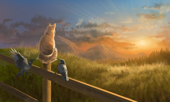 Обои Рыжий кот смотрит на закат с воронами, by IntoTheBear