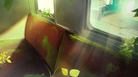 Обои Заброшенный автобус, салон которого покрылся мхом и растениями