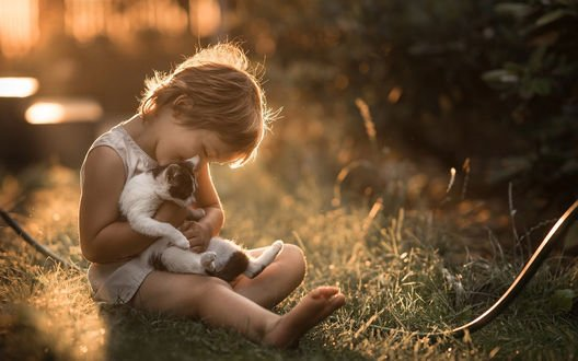 Обои Девочка с кошкой сидит на траве, фотограф Iwona Podlasinska / Ивона Подлясинска