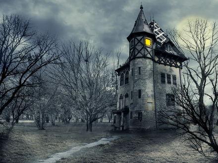 Обои Таинственный замок с горящим окном среди голых деревьев вечером под луной