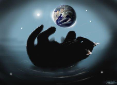 Обои Черный котенок играет с Землей, by SirNerdly