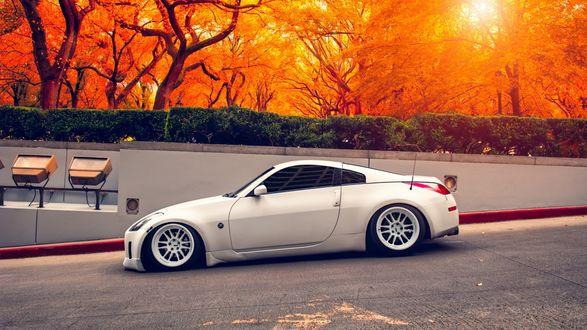 Обои Nissan 350Z стоит у забора осеннего парка