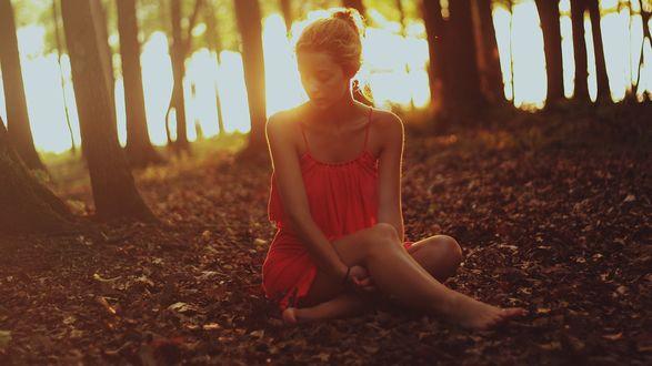 Обои Девушка сидит на осенних листьях в парке