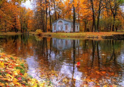 Обои Царское село осенью, Санкт-Петербург, октябрь, фотограф Гордеев Эдуард