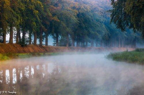 Обои По лесной реке стелется туман