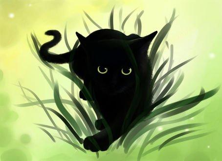 Обои Черная кошка в траве, by Aiecan
