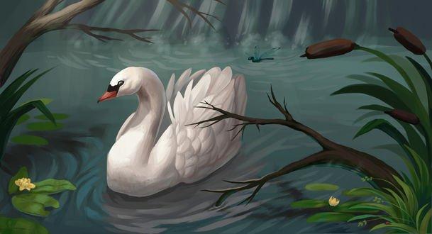 Обои Стрекоза возле белого лебеда на воде, by Night-Owl-23