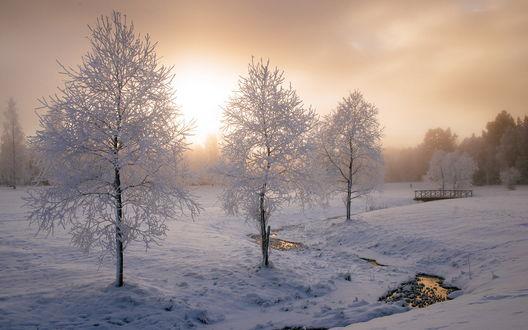 Обои Зимний пейзаж в городе Умео, Швеция / Umeа, Sweden