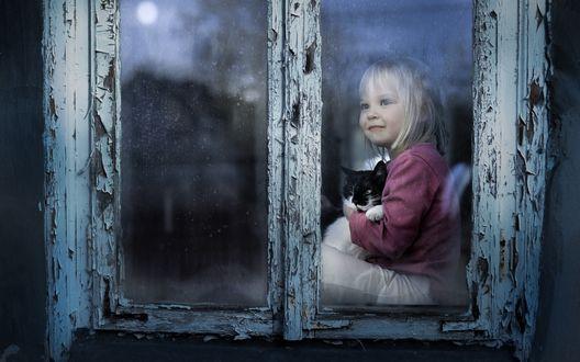 Обои Светловолосая девочка с котом на руках сидит у окна