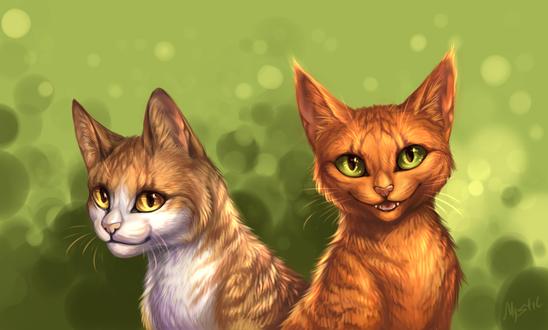 Обои Два кота на зеленом фоне, by M-Y-S-T-l-C