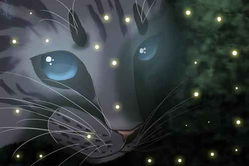 Обои Мордочка серого кота с голубыми глазами, by UnknownNightspirit