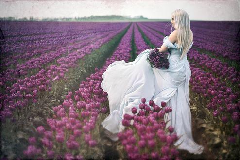 Обои Девушка в платье на тюльпановом поле