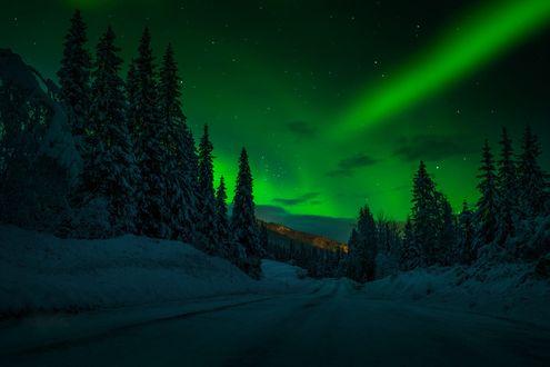 Обои Зимняя дорога под ночным небом с северным сиянием, фотограф Adnan Bubalo