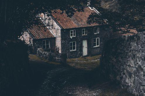 Обои Мрачный домик посреди темных осенних деревьев