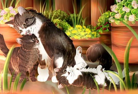 Обои Кошка и два котенка, by pose-y