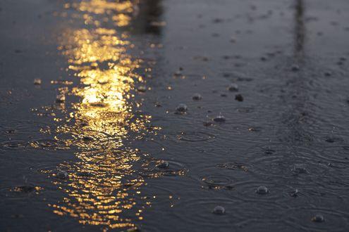 Обои Лужа с каплями воды на асфальте в свете вечерних фонарей