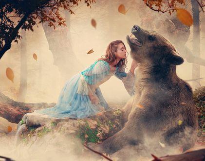 Обои Девушка и медведь, фотограф Ionut Caras