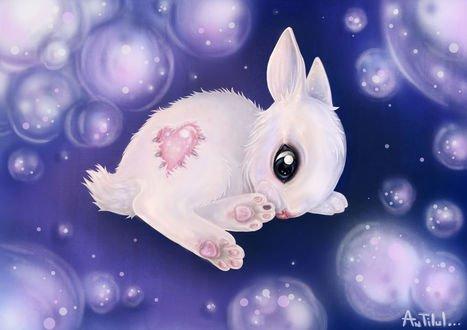 Обои Белый кролик с сердцем на фоне бликов, by antilul