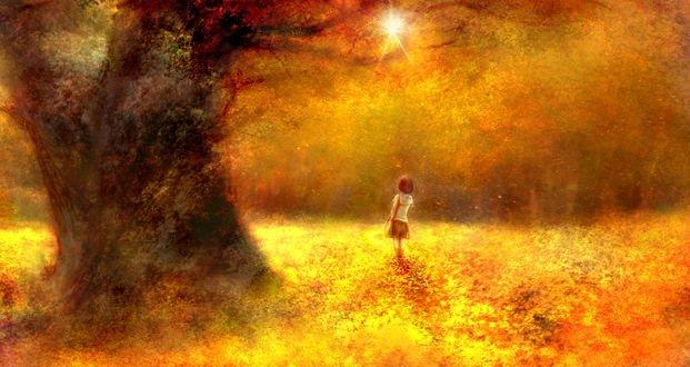 Обои Девочка в школьной форме в осеннем лесу, by 00