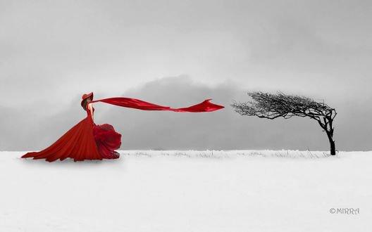 Обои Девушка в красном стоит перед деревом на ветру, фотограф Alina MIRRA