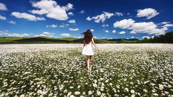 Обои Девушка в поле с ромашками, фотограф Sergey Shatskov