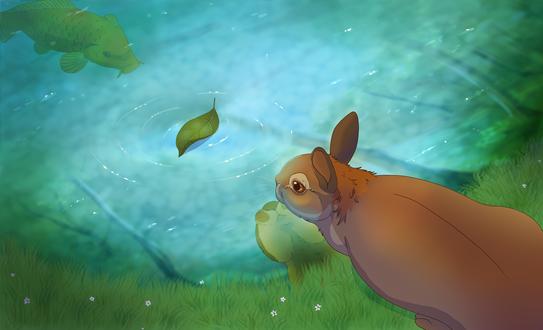 Обои Зайчик у воды с сомом, by The-Hare