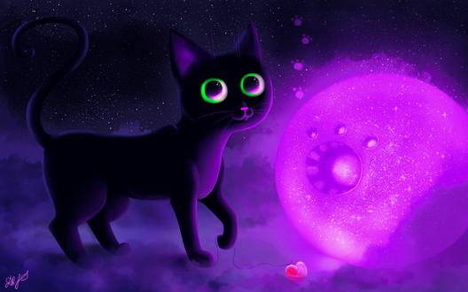 Обои Черный кот на фоне ночного неба и фиолетового шара, by DamaskRose0503