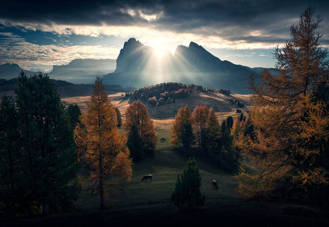 Обои Восход солнца в Alp Di Siusi / Альп-Ди-Сиузи, Itali / Италия, фотограф Max Rive