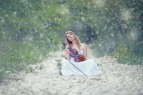 Обои Девушка со скрипкой сидит на лесной тропе, усыпанной камнями