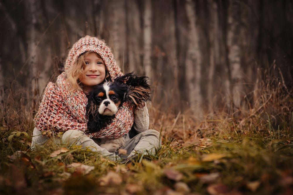 Обои для рабочего стола Девочка с собакой породы Кавалер-кинг-чарльз-спаниель в осеннем лесу, фотограф Maria Kovalevskaya