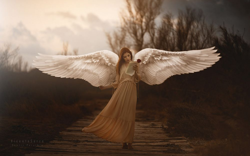 Обои для рабочего стола Девушка-ангел в длинном платье с письмом и розой в руке стоит на мосту, by Araceli Bazan