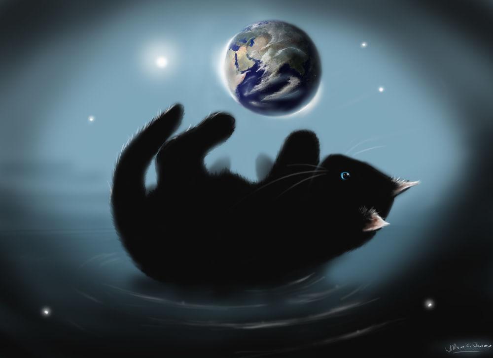Обои для рабочего стола Черный котенок играет с Землей, by SirNerdly