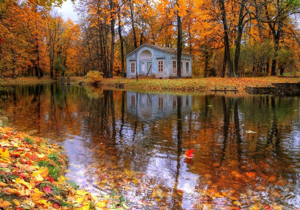 Обои для рабочего стола Царское село осенью, Санкт-Петербург, октябрь, фотограф Гордеев Эдуард