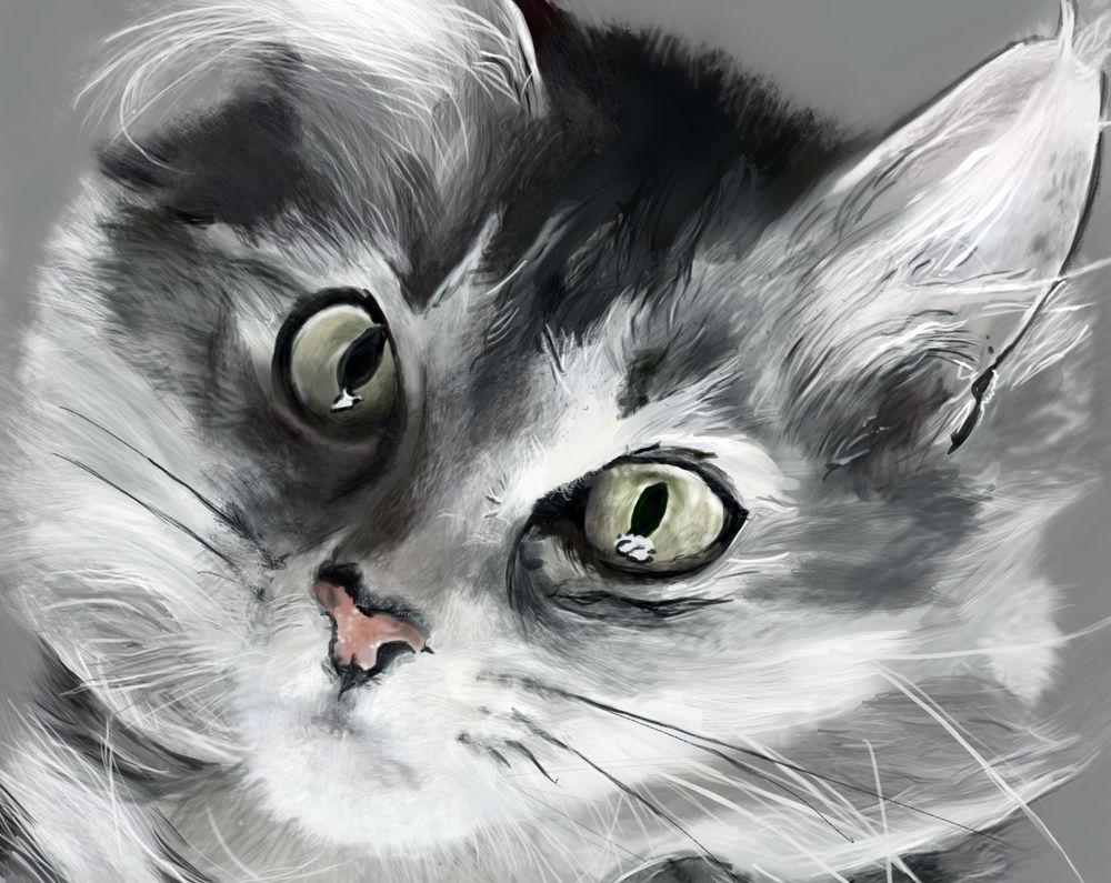 Обои для рабочего стола Кошечка с зелеными глазами, by GryFalck