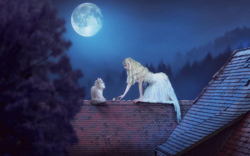 Обои для рабочего стола Девушка в белом платье, мышь и кошка сидят на крыше дома в полнолуние