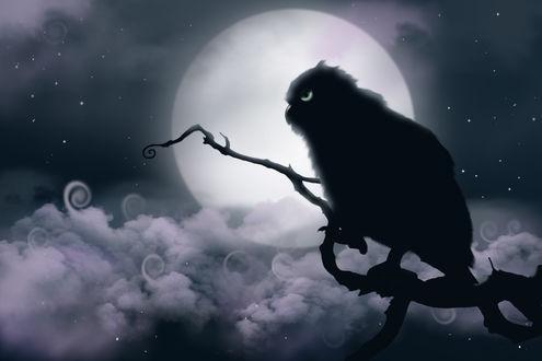 Обои Сова на фоне полной луны, by JessHavok