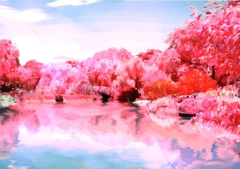 Обои Деревья на берегу озера